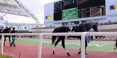 JRA阪神競馬場